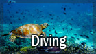 att macondo diving IT